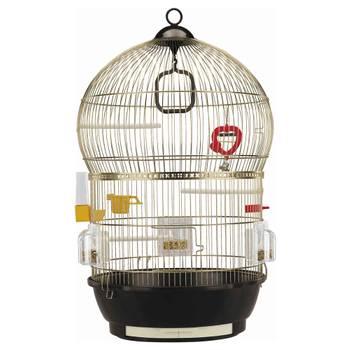 Cage bali pour oiseaux - ferplast - laiton