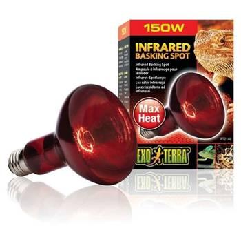 Lampe infrarouges réptile de 95mm - exo terra - 150w