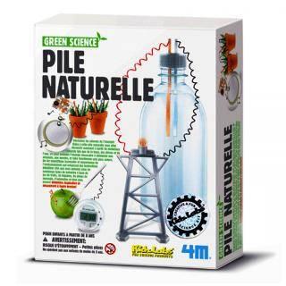 Kit de réalisation Green Science : Pile naturelle